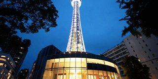 横浜マリンタワーから3つのビアガーデンが登場!あなたはどの店で楽しみますか? | NOMOOO