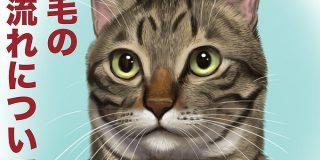 猫さんの毛の流れを図解したイラストのもふもふっぷりがすごいし参考になる「鼻のところが猫のつむじ」 - Togetter