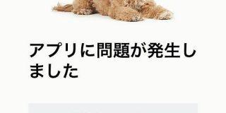 Amazonのアプリがサーバーダウンするとシアトルの本社にいる犬の写真が表示される話 - Togetter