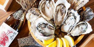 牡蠣好き必見!『かき家 こだはる』新橋店で高級牡蠣?日本酒食べ飲み放題開催 | NOMOOO