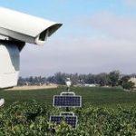 作物を食い荒らす害鳥をレーザー光線で追い払う「全自動レーザーかかし」が登場 – GIGAZINE