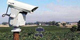 作物を食い荒らす害鳥をレーザー光線で追い払う「全自動レーザーかかし」が登場 - GIGAZINE