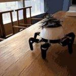 【画像】枯れているヒマワリを見た開発者が作った動く植木鉢がめちゃくちゃ気持ち悪い:キニ速