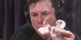 【悲報】イーロンマスクさん、インタビュー中に大麻を吸ってしまい大炎上 : IT速報
