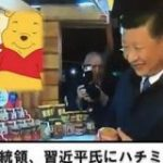 【悲報】プーチン大統領、習近平主席にハチミツをプレゼントしてしまう:キニ速