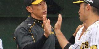 阪神・矢野燿大監督誕生へ!片岡は退団 : なんじぇいスタジアム