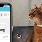 ネコ様専用ライフログツール「Catlog」をバイオロギング研究者が本気で開発 – Engadget