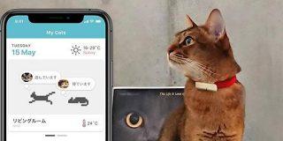 ネコ様専用ライフログツール「Catlog」をバイオロギング研究者が本気で開発 - Engadget