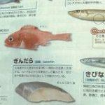 とある教材の魚のページに載っている銀だらの様子が切なすぎるし解せないしもう「何故こうなった!?(笑)」 – Togetter