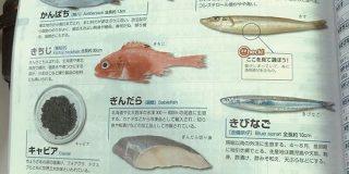 とある教材の魚のページに載っている銀だらの様子が切なすぎるし解せないしもう「何故こうなった!?(笑)」 - Togetter
