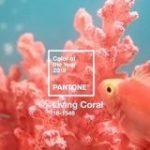 PANTONEが選ぶ2019年の色「Living Coral」を使った配色例 | Webクリエイターボックス