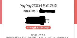 【悲報】PayPay、付与取消祭りで大荒れ。複垢や家族間でクレカ使い回しが「PayPay残高付与の取消」表示 : IT速報