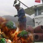 激減のタコ 不可能だった養殖を実現へ | NHKニュース