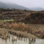 中国では2020年までに農村地でもキャッシュレスが浸透 | TechCrunch