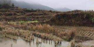 中国では2020年までに農村地でもキャッシュレスが浸透   TechCrunch