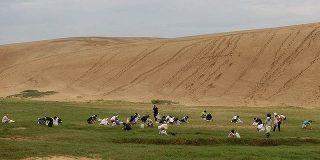 鳥取さん、砂丘が草原化した為に除草を始めてしまう:キニ速