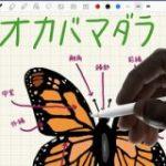 Apple、新型iPad Airを発売。ペンも使えてコスパは抜群か : IT速報