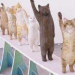 ハイタッチできる猫の彫刻が可愛過ぎてもうこれ猫好きにはたまらない「この顔見て!」「家に置きたい」 – Togetter