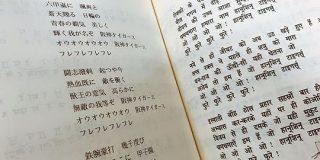 『ヒンディー語で歌う六甲おろし』が発見される「文の構造が意味不明」「そもそも日本語としても意味不明」 - Togetter