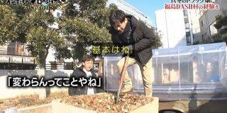 TOKIOが「カレーを作るため」に今回やったのは、鉄骨の溶接ともらった落ち葉&自作の米ぬかで堆肥を作る #鉄腕DASH - Togetter
