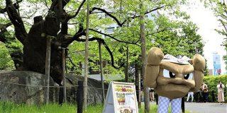 岩手県の応援ポケモンに任命されたイシツブテさん、まったく見えない『足』に注目が集まる - Togetter