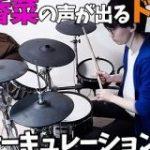 花澤香菜の声が出るドラムで「恋愛サーキュレーション」を叩く動画がハナザー三昧。「いそのくぅーん」のチョイスに笑う – Togetter