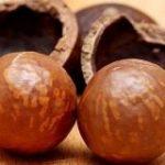 マカダミアナッツの遺伝的多様性は非常に乏しく商業栽培種の70%が単一の起源を持つ – GIGAZINE