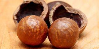 マカダミアナッツの遺伝的多様性は非常に乏しく商業栽培種の70%が単一の起源を持つ - GIGAZINE