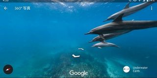 【楽しい】Googleの水中ストリートビューがいつの間にか超絶パワーアップしていてヤバい! 人や車のかわりに海ガメやイルカとすれ違う不思議な感覚 | ロケットニュース24