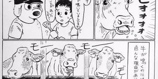【漫画】牛が鳴いていても近くには寄ってはいけない…酪農従業員さんの解説漫画がわかりやすいが恐ろしい - Togetter