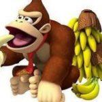 生物科の学生さんが「ゴリラはバナナを食べない」と言っていたので調べたら思ってたよりずっと根本的な理由からだった「そんなバナナ」 – Togetter