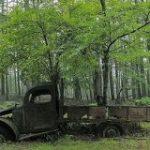 奥多摩の山道に打ち捨てられた廃トラックがあまりにエモすぎてグッとくる人々「ジブリに出てきそう」 – Togetter