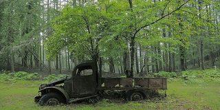 奥多摩の山道に打ち捨てられた廃トラックがあまりにエモすぎてグッとくる人々「ジブリに出てきそう」 - Togetter
