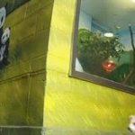 【GIF】タヌキさん、人間とばったり遭遇しびっくり:キニ速