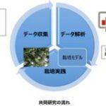 富士通、ラズベリーパイを用いてメロンを水耕栽培。高品質なメロンを効率よく安定的に : IT速報