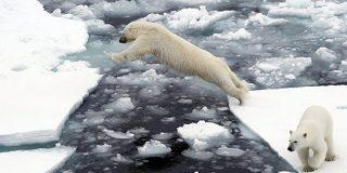 北極圏で最高気温記録 - Sputnik