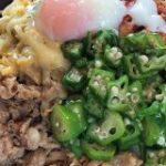 【超鬼盛り】牛丼界の最高峰に君臨し続ける「すき家のキング盛り」にトッピング全開で薄毛が挑戦してみた。 | ロケットニュース24
