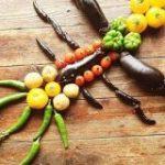 全てナス科の野菜で作られた『ナス科の地上絵』がこちらです「頭のいいオヤジギャグだ」「これ全部ナス科なのか」 – Togetter