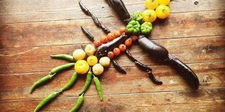 全てナス科の野菜で作られた『ナス科の地上絵』がこちらです「頭のいいオヤジギャグだ」「これ全部ナス科なのか」 - Togetter