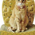 『やはり猫は尊い生き物だった』フェリシモがとんでもなく神々しいアイテムを発売していた「毎日拝んでるけどますます拝まなければ!」 – Togetter
