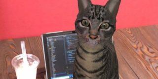 Googleで『ネコ』と検索するとAR猫さんを召喚できる!ほかの動物も確認されてとても楽しい「トラ飼育NGの我が家でも放し飼いできます!」 - Togetter