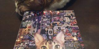 #猫がかわいいジャケ展 - Togetter