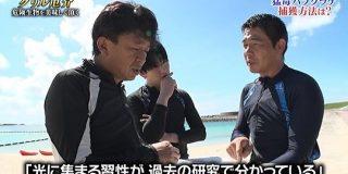 触れたらアウトな「海の毒殺者」を14年前に中断された研究の論文から城島リーダーが再現したトラップで捕獲し「いつもの店」で美味しく調理 #鉄腕DASH - Togetter