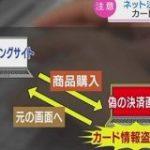 ショッピングサイト決済時だけ偽画面 クレジット情報を盗む | NHKニュース