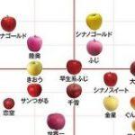 品種により個性はさまざま 甘さや酸味が一目でわかる「りんごチャート」 – ウェザーニュース