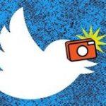 ウェブ版TwitterにアップロードしたJPEG画像は今後それ以上劣化しなくなる | TechCrunch