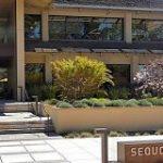 「新型コロナウイルスは2020年のブラックスワン」Sequoia Capitalが、起業家に再び警告 – BRIDGE