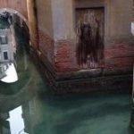 ベネチアの運河、美しさ取り戻す 観光客激減で予想外の影響|CNN