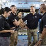 野口聡一飛行士、SpaceXが年内打ち上げ予定の「Crew Dragon」に搭乗決定 – ITmedia