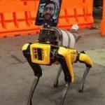 ボストン・ダイナミクスの四足歩行ロボット「Spot」が新型コロナウイルス感染者の遠隔トリアージに活用されている – GIGAZINE
